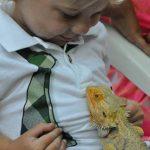 Reptile Buddy
