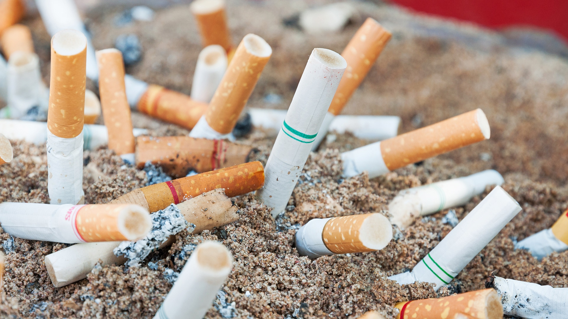 Additives in Tobacco And Their Effects On Health