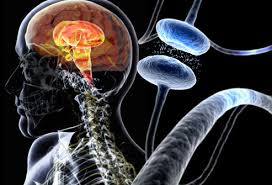 parkinson's disease signs and symptoms