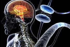 parkinson's disease signs and symptoms