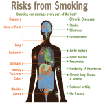 Stop Smoking - You Have Everything You Need to Succeed